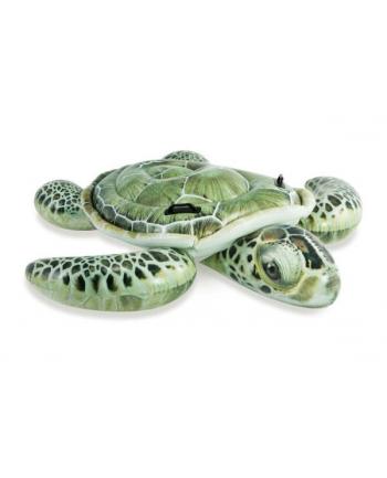 Zabawka do pływania Żółw morski w pud. 191x170cm 57555 INTEX