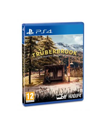 mergegames Gra Truberbrook (wersja BOX; DVD; ENG; od 12 lat)