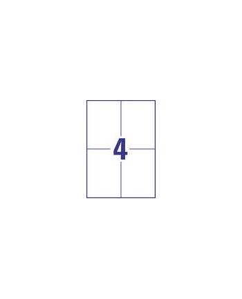Zestaw etykiet uniwersalne Do nadruku AVERY Zweckform EUROPE100 ELA024 (105mm x 148mm; Papier; kolor biały)