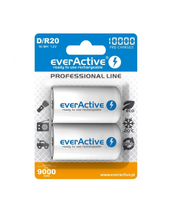 Zestaw akumulatorków everActive EVHRL20-10000 (10000mAh ; Ni-MH)
