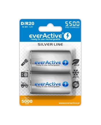 Zestaw akumulatorków everActive EVHRL20-5500 (5500mAh ; Ni-MH)