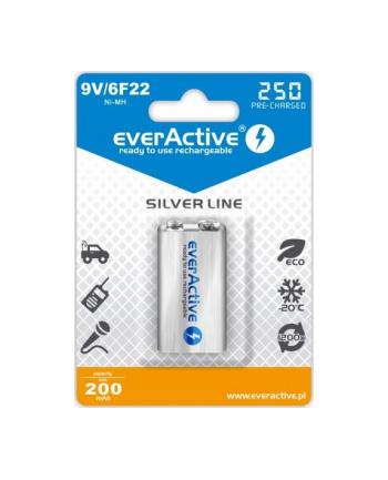 Zestaw akumulatorków everActive EVHRL22-250 (250 mAh ; Ni-MH)