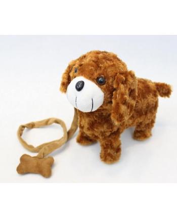 norimpex Pies na smyczy brąz 32cm NO-1002316