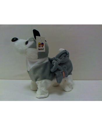 norimpex Pies na smyczy Husky 32cm NO-1002315
