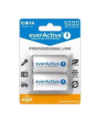 Zestaw akumulatorków everActive EVHRL14-5000 (5000mAh ; Ni-MH)