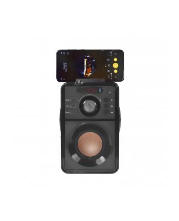 Vakoss Bezprzewodowy Głośnik Bluetooth SP-2920BK 15W, USB, FM, microSD, EQ