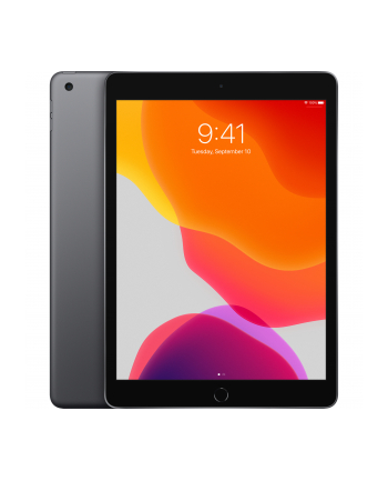 apple iPad 10.2-inch Wi-Fi + Cellular 128GB - Space Grey