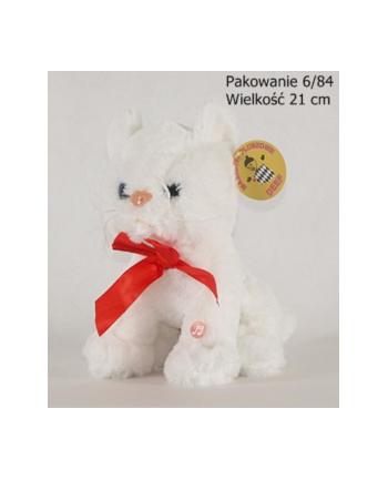 Kotek biały średni 03642 DEEF