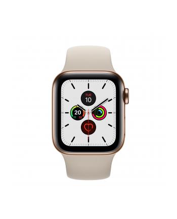 Apple Watch S5 Stainless steel 40mm gold - Sports bracelet stone MWX62FD / A