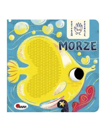 morex Książka Dotykam, poznaję - Morze