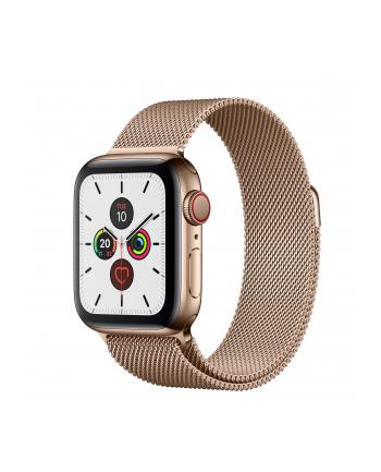 Apple Watch S5 Milanese bracelet 40mm gold - Milanaise gold MWX72FD / A