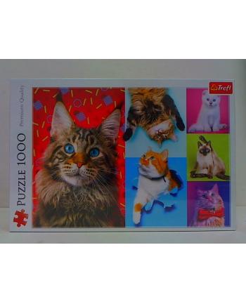 trefl Puzzle 1000 Wesołe koty 10591