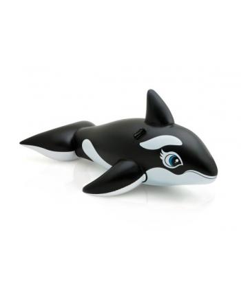 Zabawka do pływania Orka 58561NP INTEX