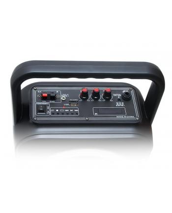 BLOW 30-350# BT800 Bluetooth Speaker