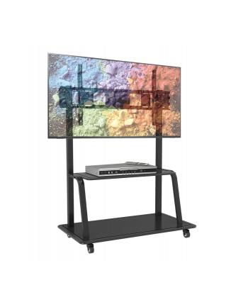 TECHLY 105575 Techly Stojak mobilny do dużych TV LCD/LED/Plazma 55-100 150kg VESA półka