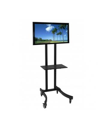 TECHLY Stojak mobilny TV LED/LCD/PDP 32-70inch 40kg z półką