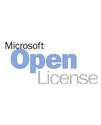 microsoft MS OPEN SharePointServer 2019 Sngl 1License NoLevel