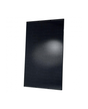 MODUŁ PV QCELLS QPEAK DUO BLK G501 315 FULL BLACK