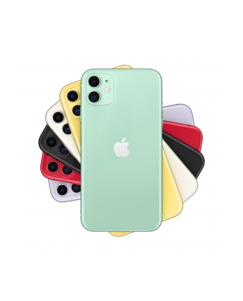 Apple iPhone 11 - 256GB - 6.1, phone (green, iOS)