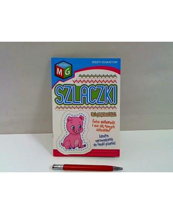 multigra Szlaczki dla pięciolatka 13540