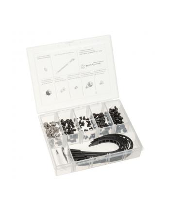 Silverstone CA02 zestaw śrubek, podkładek i opasek zaciskowych (SST-CA02)