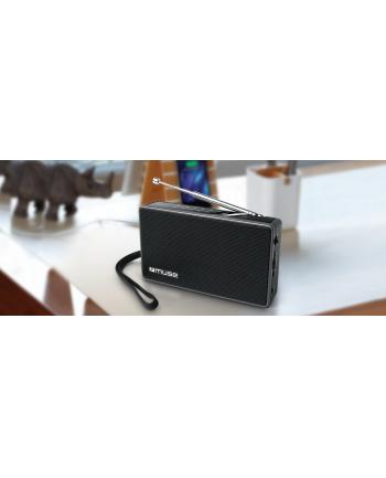 muse Radio M-030 R
