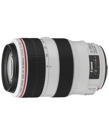 Canon EF 70-300mm 1:4.0-5.6 L IS USM