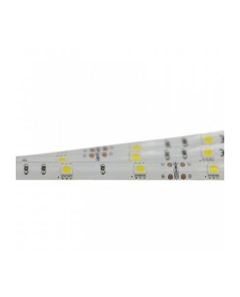 Pasek LED 5m SMD50 wodo 150LED Ciepla Biala