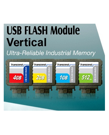 2GB USB Flash Module (Vertical)