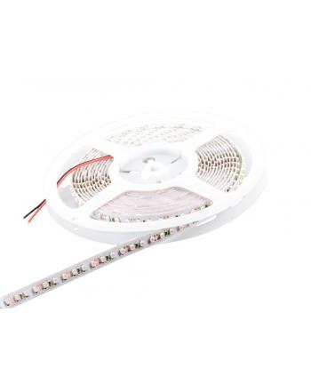 Whitenergy taśma LED 5m | 120szt/m | 3528 | 9.6W/m | 12V DC | zielona