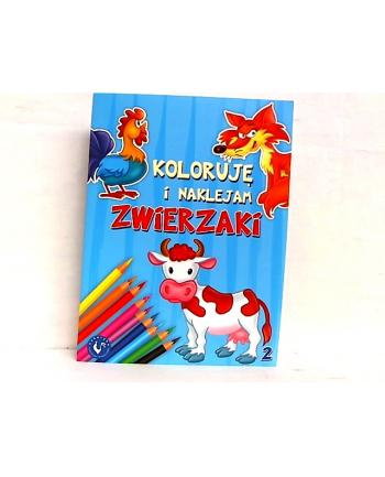 AMI PLAY Koloruję i Naklejam Zwierzaki 2