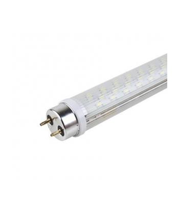 Żarówka ACME HP LED T8 S009 Transparent 18W80hG13