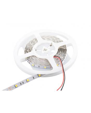 Whitenergy taśma LED 5m | 60szt/m | 3528 | 4,8W/m | 6000K zimna biała | bez kon