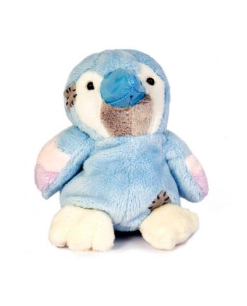 C.BLANCHE Niebieski Dziobek Papuga