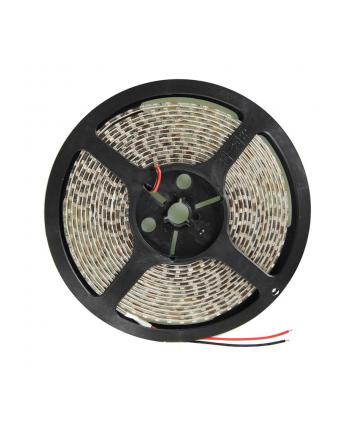 Whitenergy taśma LED 5m | 120szt/m | 3528 | 9.6W/m | ciepła biała | IP65|bez kon