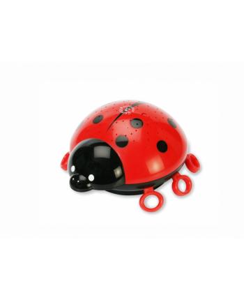 Lampka Starlight Ladybird