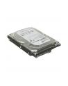 Dysk SEAGATE ST1000DX001 1TB SSHD 7200 64MB SATA III - SSHD - nr 23