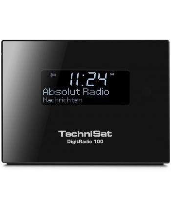 TechniSat Radioodtwarzacz DigitRadio 100
