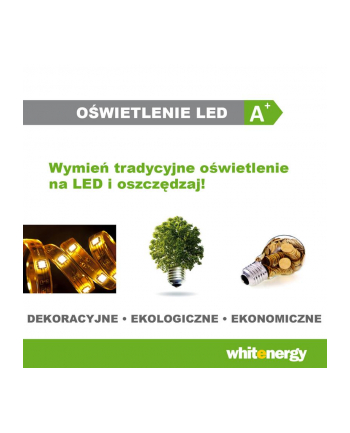 Whitenergy Zasilacz Uniwersalny Modułowy 200W/ DC 12V/ 16.67A /AC 170-264V