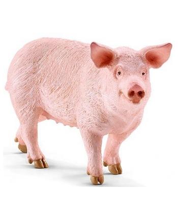 SCHLEICH Świnia