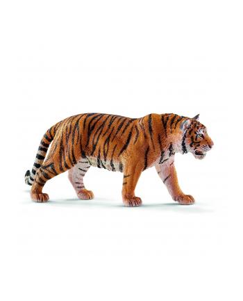 SCHLEICH Tygrys