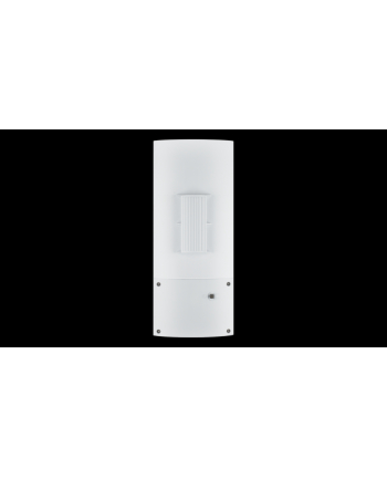 D-Link Unified Simultaneous Dual-Band PoE Outdoor 5GHz Bridging Access Point
