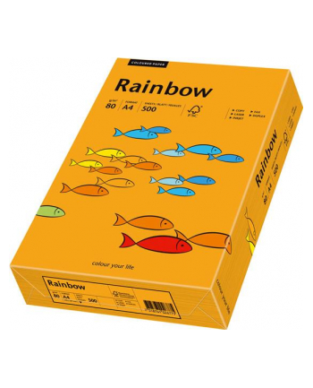 papier kolorowy Rainbow pomarańczowy 24