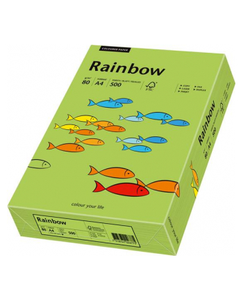 papier kolorowy Rainbow zielony 76