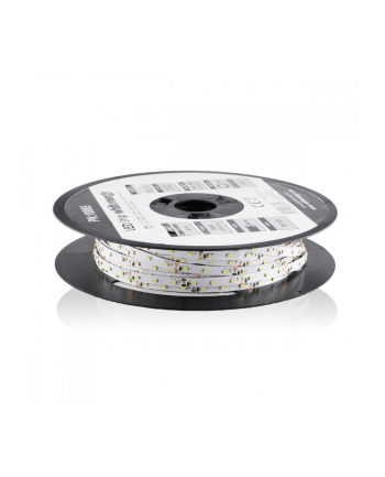 Whitenergy taśma LED 50m | 3528 | 4.8W/m | 12V DC | Biała | IP20