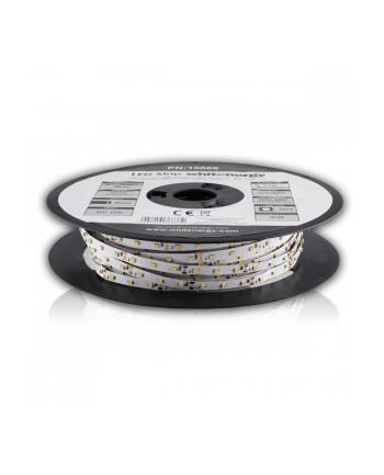 Whitenergy taśma LED 50m | 3528 | 4.8W/m | 12V DC | ciepła biała | IP20