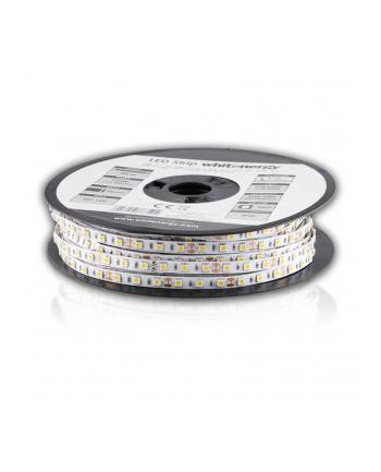 Whitenergy taśma LED 50m | 5050 | 14.4W/m | 12V DC | ciepła biała | IP20