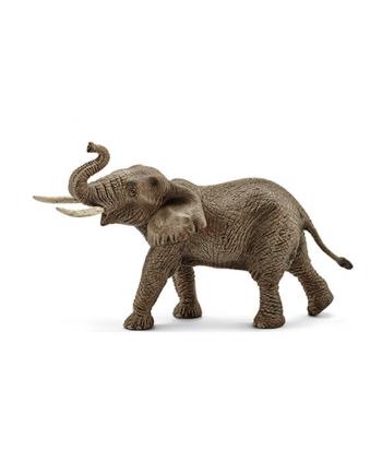 SCHLEICH Samiec słonia afrykańskiego