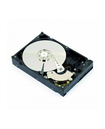 Intenso Internal Hard Drive - Retail Kit 5 TB - SATA - 3.5''