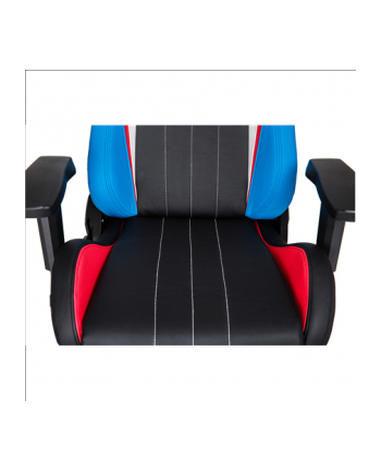 AKRACING Premium Gaming Chair Style Edition